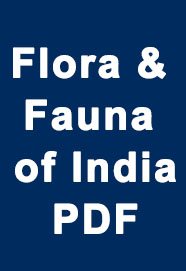 flora-and-fauna-of-india-pdf-download-for-ssc--railway-exams